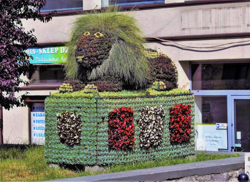 Bytom. Kwiatowy lew z ulicy Dworcowej. Fot. Jerzy S. Majewski