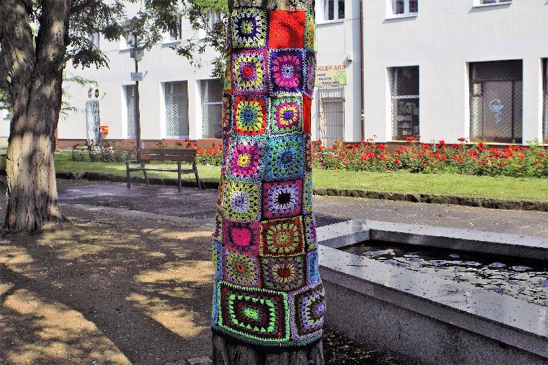 Gdańsk-Wrzeszcz. Pień drzewa ubrany w włóczkowy sweterek. W tle blok przy ul. Bernarda Sychty 6a oraz fragment fontanny. Fot. Jerzy S. Majewski