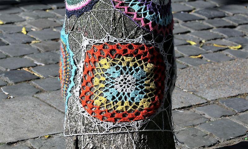 Bruksela. Fragment włóczkowego sweterka na drzewie pośrodku Rue du Marché aux Herbes. Fot. Jerzy S. Majewski