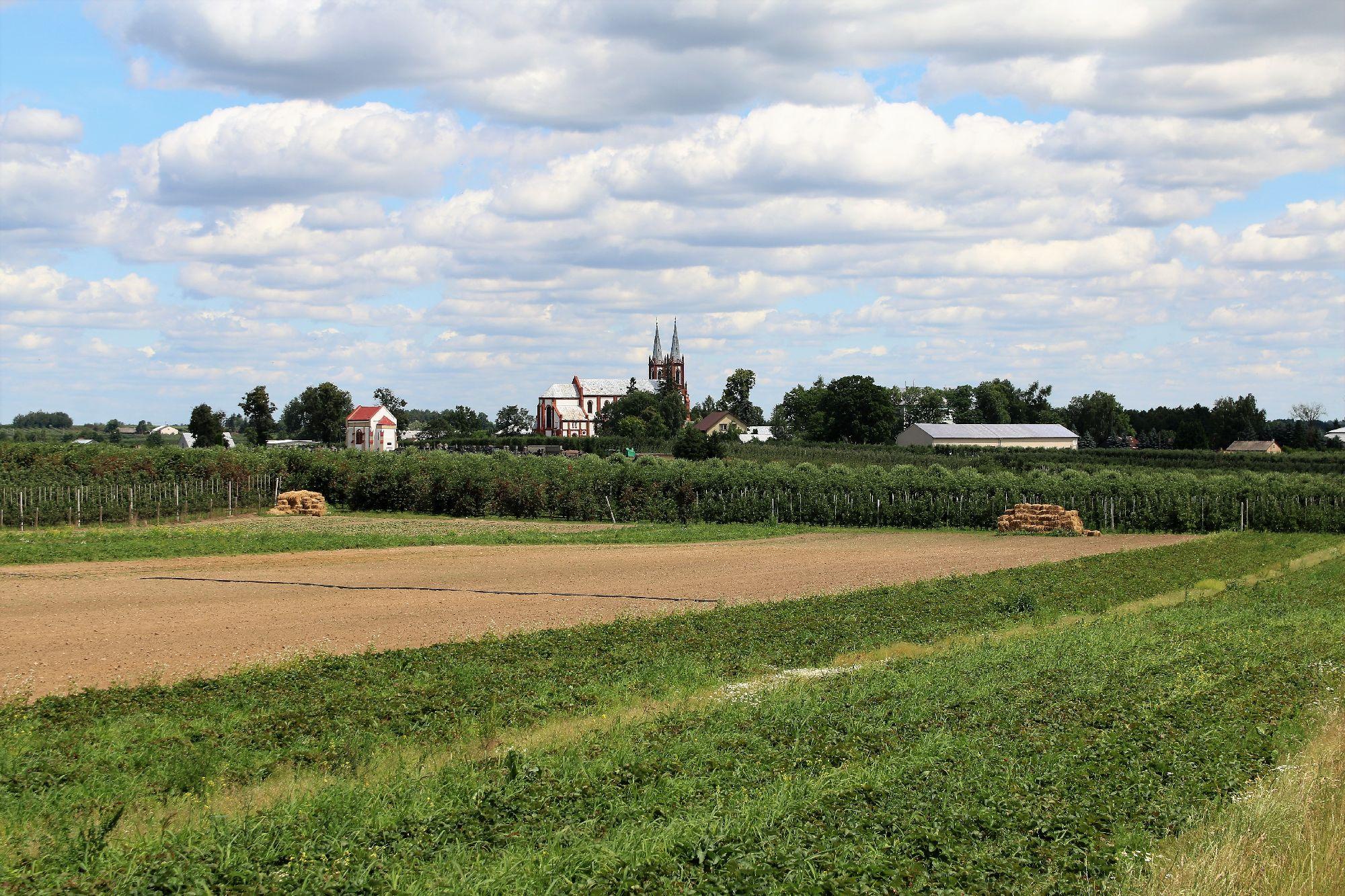 Wiejskie katedry w formach strzelistych