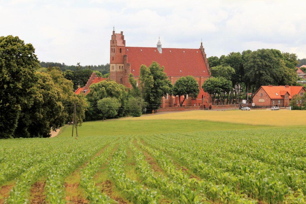 Żarnowiec. Kościół od strony południowej z drogi polnej wiodącej do Lubkowa. Z prawej widać ceglany budynek dawnej szkoły gminnej wzniesionej w 1909 r. Fot. Jerzy S. Majewski