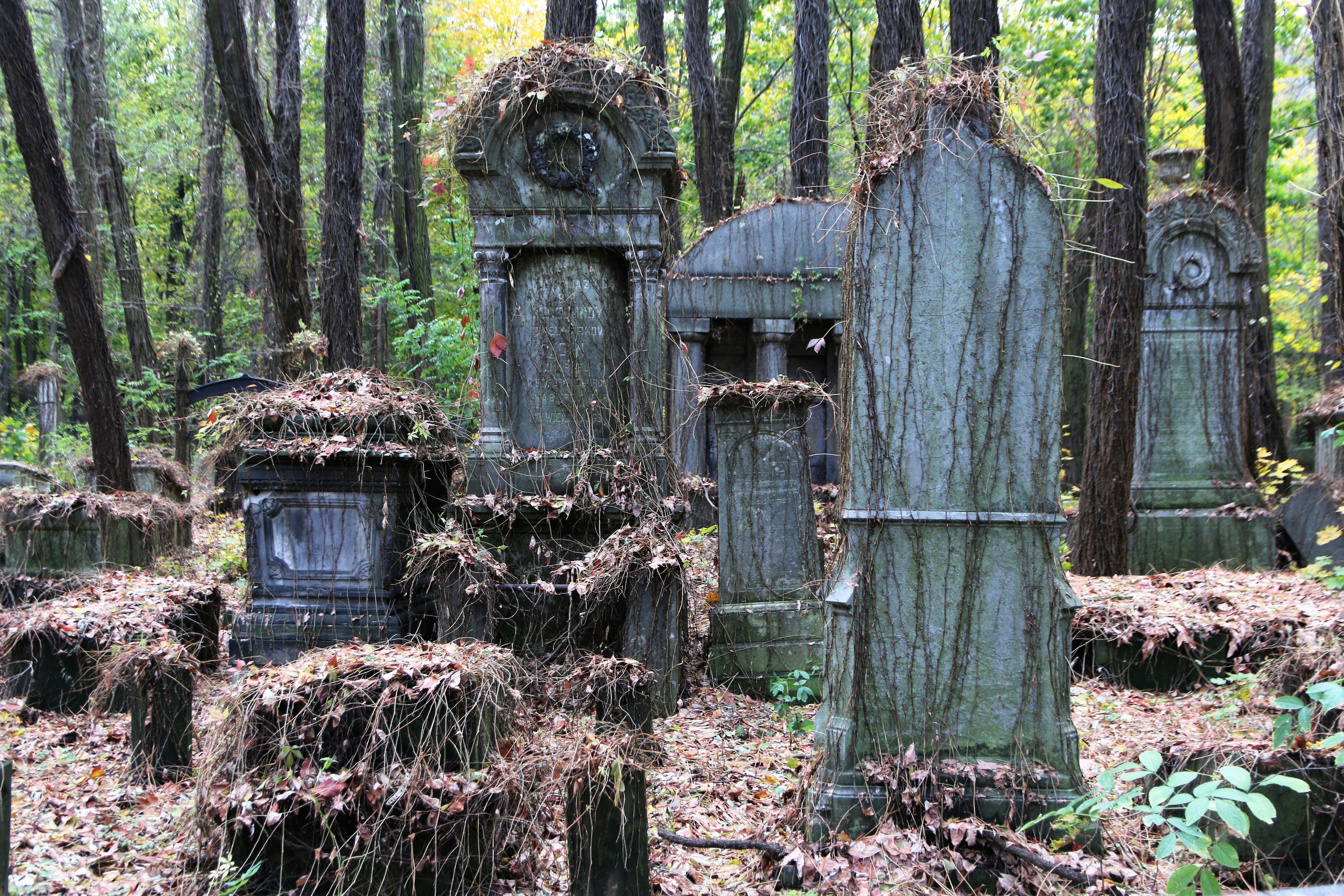 Cmentarz Żydowski na Powązkach. Odzyskane piękno zabytkowych grobowców