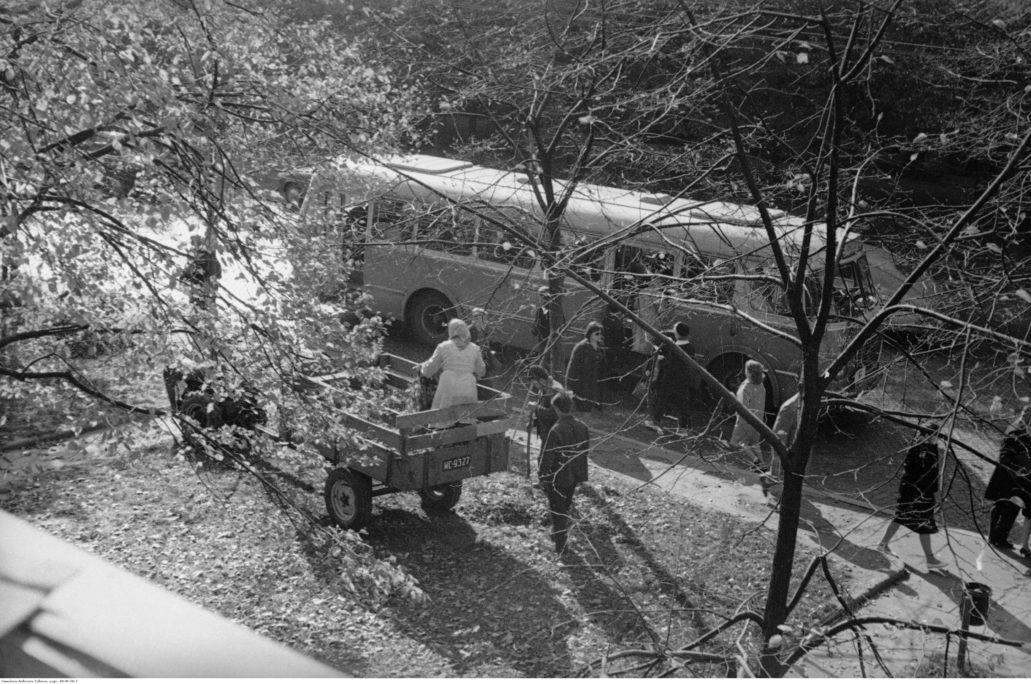 Warszawa. Al. Niepodległości. Tak około 1966 r. wyglądał chodnik Al. Niepodległości pomiędzy kamienicami w Al. Niepodległości 156 i 158. Zdjęcie wykonane z domu pod nr. 158, z mieszkania Grażyny Rutowskiej, fotografki i dziennikarki. Jezdnia Al. Niepodległości miała w tym czasie nawierzchnię z kamiennej kostki. Wzdłuż Alei rosły po każdej stronie ulicy dwa szpalery drzew. Wiele z nich wycięto w latach 80. XX w. w trakcie budowy tunelu metra. W miejscu szerokich trawników dziś jest parking. Fot. Grażyna Rutowska Narodowe Archiwum Cyfrowe