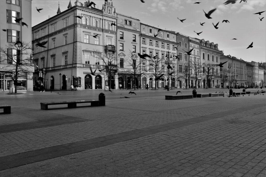 Kraków. Rynek Główny. Linia A-B, czyli pierzeja północna. Zwykle w tym miejscu parkuje sznur krakowskich dorożek, które bardziej przypominają karoce niż dorożki. Dziś panuje tu pustka. Pozostały tylko gołębie. Fot. Jerzy S. Majewski