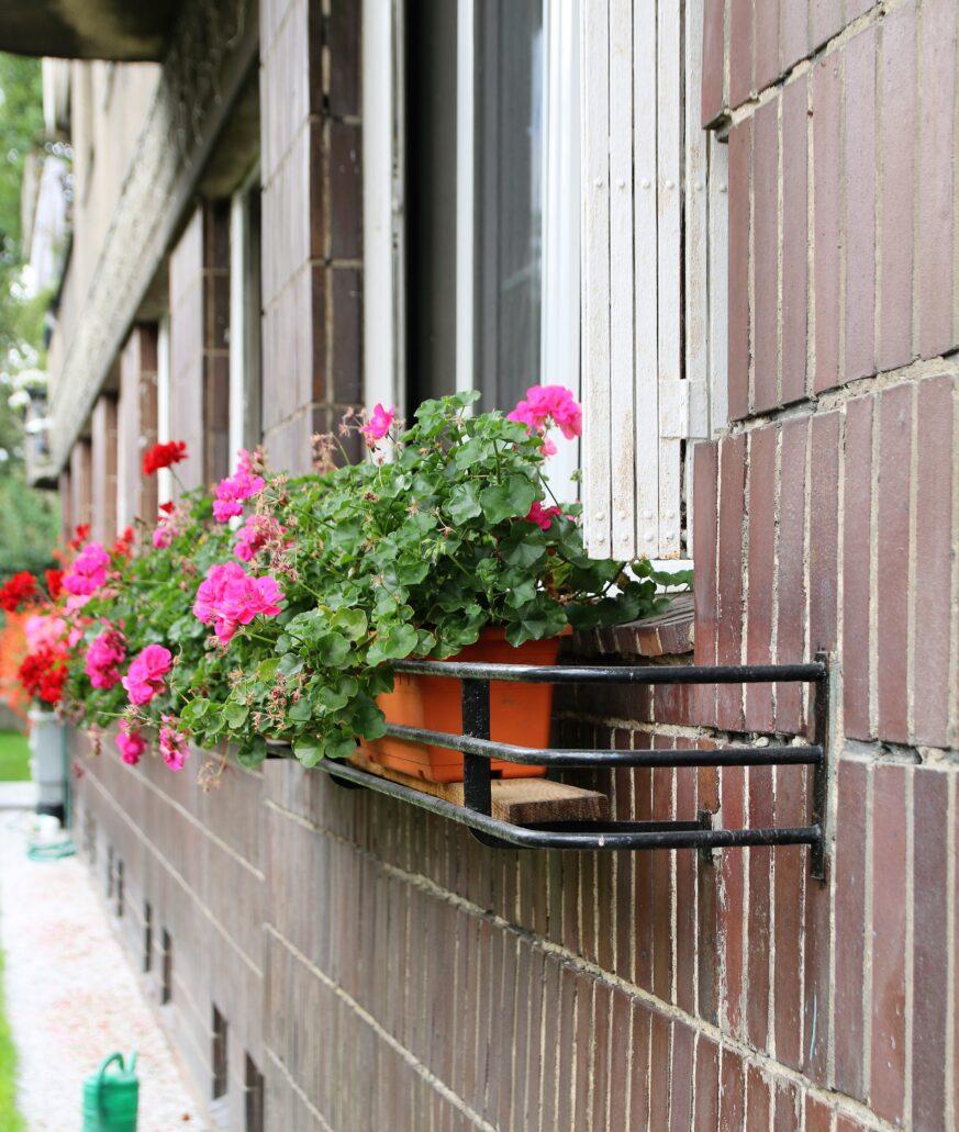 Warszawa. Narbutta 8. Uchwyty na skrzynki na kwiaty pod oknami parteru kamienicy. Fot. Jerzy S. Majewski